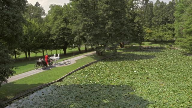 stockvideo's en b-roll-footage met luchtfoto paard en wagen gaan rond een meertje in het park - paard en wagen