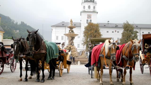 pferdekutsche in salzburg, österreich - pferdeantrieb stock-videos und b-roll-filmmaterial