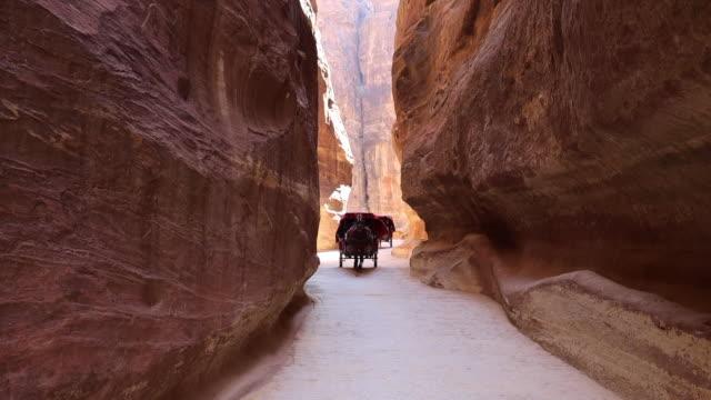 vídeos de stock e filmes b-roll de horse carriage in the narrow canyon of the ancient city of petra. - petra