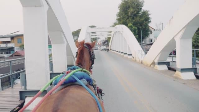 vídeos de stock, filmes e b-roll de carruagem do cavalo na cidade velha na cidade de lampang. - animal de trabalho
