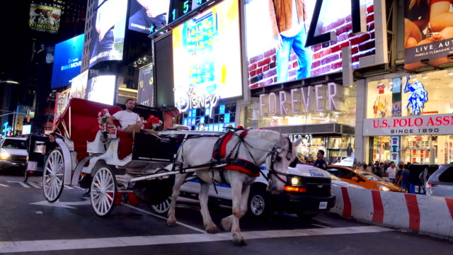 Horse carriage in Times Square, New York City