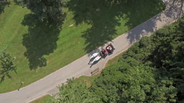 stockvideo's en b-roll-footage met luchtfoto paard en wagen getrokken door twee witte paarden - paard en wagen