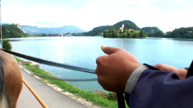 hd: horse carriage - lake bled stock videos & royalty-free footage