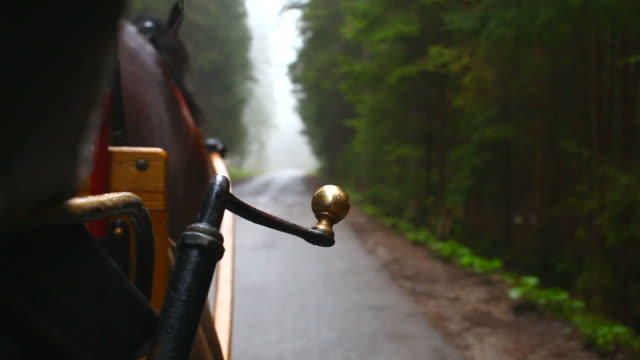 horse carriage - compartment stock videos & royalty-free footage