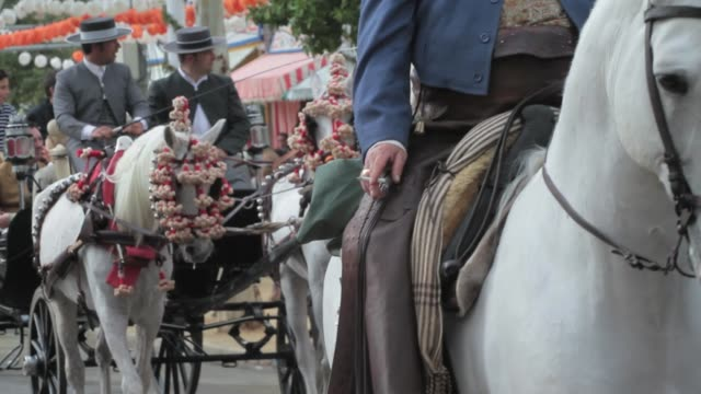vídeos y material grabado en eventos de stock de horse carriages cruising the april fair in seville horse at the april fair in seville on april 29, 2012 in seville, spain - pasear en coche sin destino