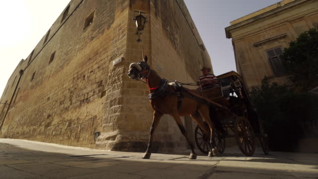 vídeos de stock, filmes e b-roll de horse drawn carriage in valletta, malta - unesco world heritage site - carroça