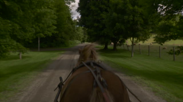 WS POV Horse drawn carriage on dirt track / Stowe, Vermont, USA