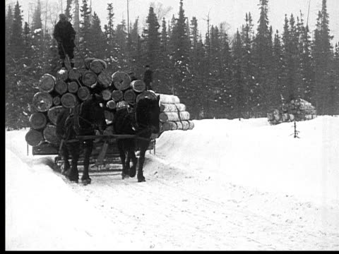 1927 B/W MS WS Horse drawn sleighs with stacked logs moving through rural road, Ontario, Canada