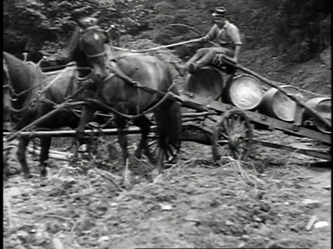 1923 reenactment horse drawn trailers carrying barrels of oil through bumpy fields / united states  - 1923 stock-videos und b-roll-filmmaterial