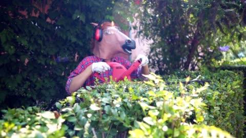 horse gardening - pruning stock videos & royalty-free footage