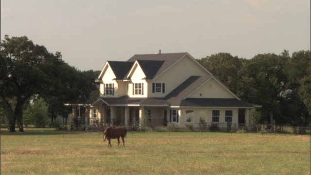 xws horse grazing in grass w/ large twostory country home bg domesticated working animal eating feeding secluded acreage expensive wealth - farmhouse stock videos & royalty-free footage