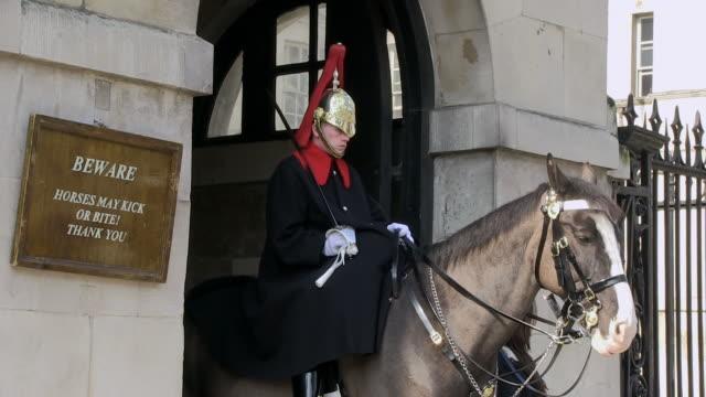 ms horse guard standing at whitehall / london, england, great britain  - 騎兵隊点の映像素材/bロール