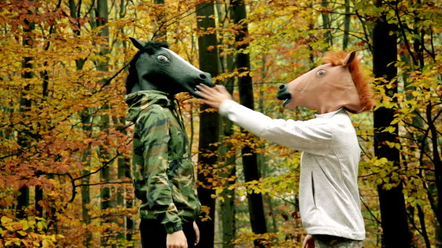 horse head mask - animal head stock videos & royalty-free footage