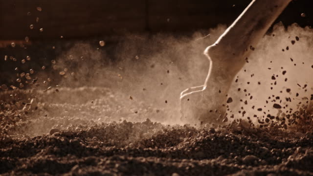 slo mo ts horse hooves hitting the ground in gallop - horse stock videos & royalty-free footage