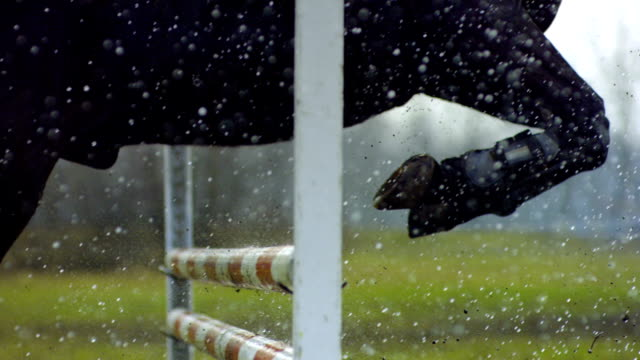 horse hooves moving over obstacle. - hurdling horse racing stock videos and b-roll footage