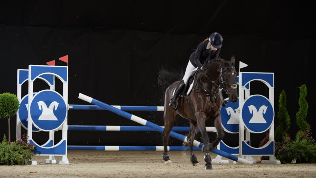 slo mo horse jumping over oxer - bridle stock videos & royalty-free footage