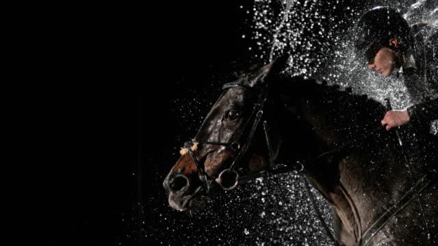 SLO MO Horse jumping through a water curtain at night