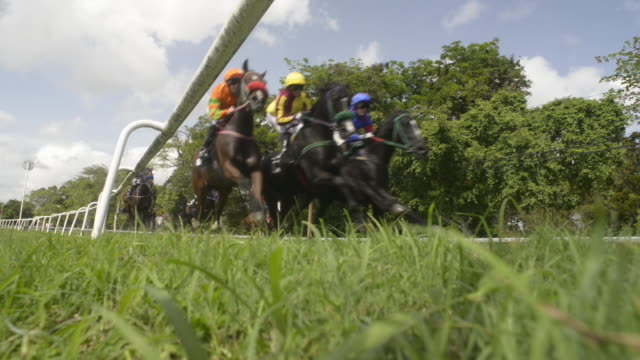 horse racing action - jockey stock videos and b-roll footage