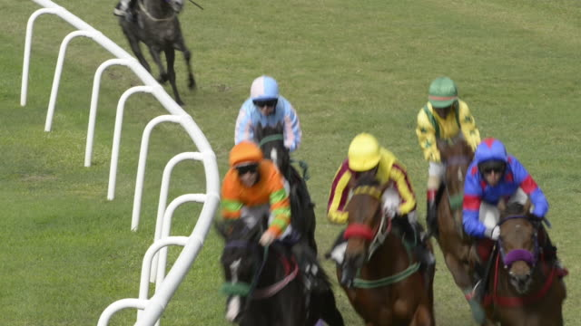 horse racing action - horse racing stock videos & royalty-free footage