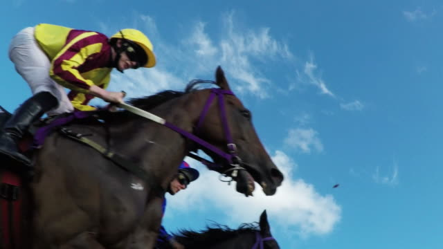 stockvideo's en b-roll-footage met horse racing action - gokken