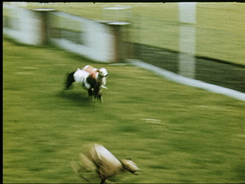 vídeos de stock, filmes e b-roll de 1947 horse racing, sports in dublin - game show