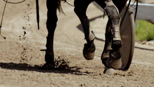 Pferderennen (Zeitlupe)