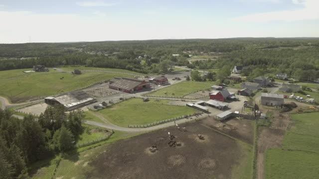 Horse Ranch Near Halifax