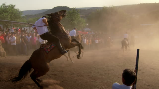 """horse rears up during traditional race, italy - """"bbc universal"""" video stock e b–roll"""