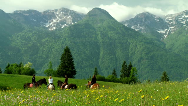 WS PAN Horse riders in countryside of Slovenia's Alpine area looking at mountains (Julian Alps) in the background / Bohinj, Triglav National Park, Slovenia