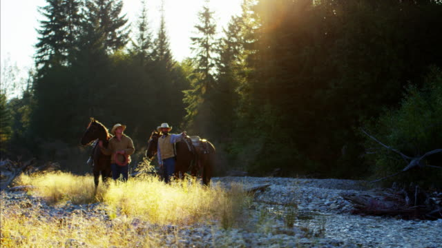 Horse riders in forest valley Rocky mountains USA