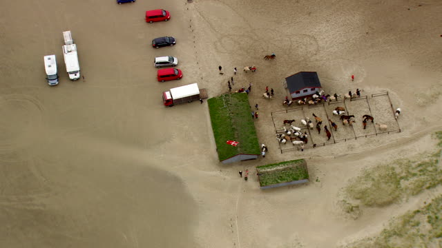 ws aerial zi zo horse riders riding horse on beach at west side of romo / ribe, denmark - medium group of animals stock videos & royalty-free footage