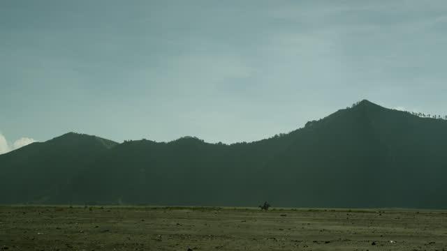 vídeos y material grabado en eventos de stock de horse rides across sand sea, java. - un solo hombre