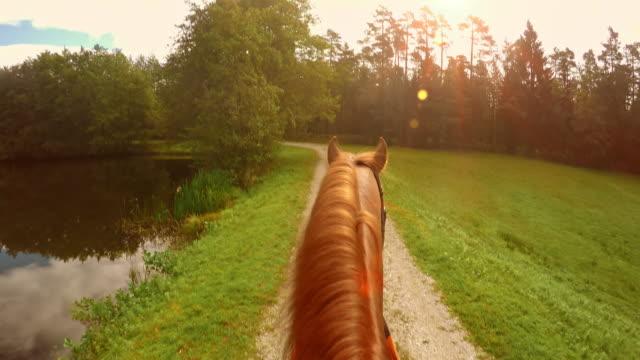 POV paardrijden langs een meer in de zon