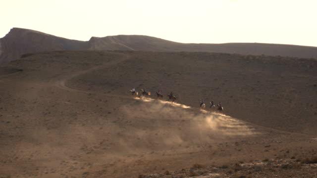 horse riding in the negev desert - arbetsdjur bildbanksvideor och videomaterial från bakom kulisserna