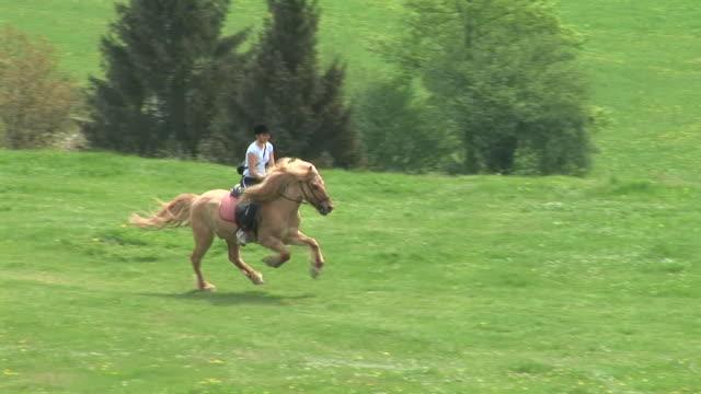 hd: horse riding - galoppera bildbanksvideor och videomaterial från bakom kulisserna
