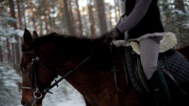 vídeos de stock, filmes e b-roll de corrida de cavalo através do bosque - animal de brinquedo