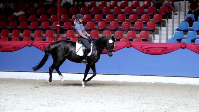 horse running with equestrian in slow motion - arbetsdjur bildbanksvideor och videomaterial från bakom kulisserna