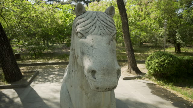 horse sculpture against tress on the sacred way of ming dynasty tombs - beijing, china - ming tombs stock videos and b-roll footage