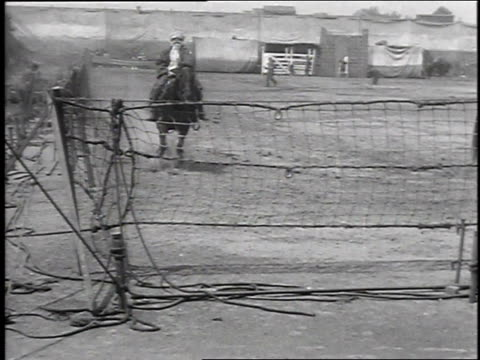 vídeos de stock, filmes e b-roll de 1930 ws horse sliding to a stop and throwing rider onto fence in circus act, may 17, 1930 / philadelphia, pennsylvania  - a parar