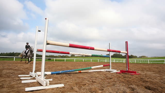 horse sport. jumping - hurdling horse racing stock videos and b-roll footage