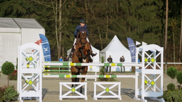 Horse with it's female rider jumping the hurdles in sunshine