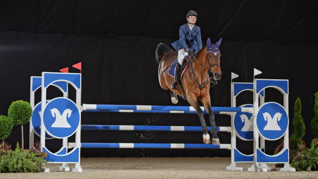 slo mo horse with rider jumping over oxer - bridle stock videos & royalty-free footage
