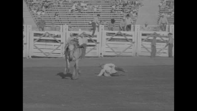 ws horseback riders in parade in los angeles coliseum / cu john wayne grand marshal sheriff eugene biscailuz and jane russell posing for photo... - bocksprång bildbanksvideor och videomaterial från bakom kulisserna
