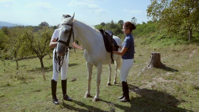 horseback riders saddling the white horse for riding - saddle stock videos & royalty-free footage