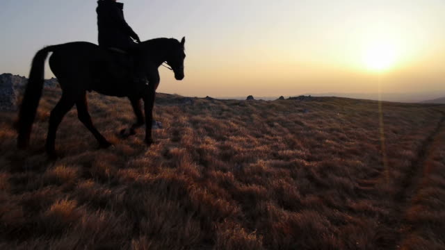 hd: horseback riding at sunset - prairie stock videos & royalty-free footage