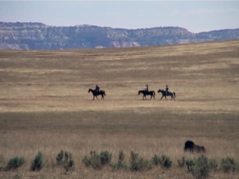 horseback riding cross the range - american bison stock videos & royalty-free footage