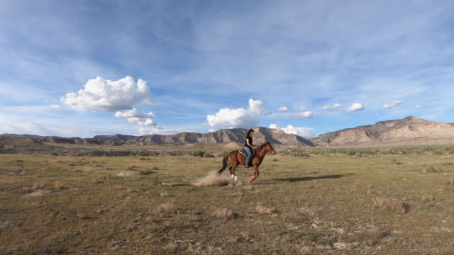 horseback riding, girl is riding a wild mustang through the desert - all horse riding stock videos & royalty-free footage