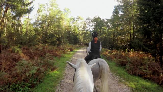 POV Horseback het berijden op bos weg