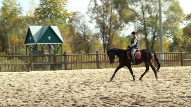 vidéos et rushes de à cheval équitation - monter à cheval