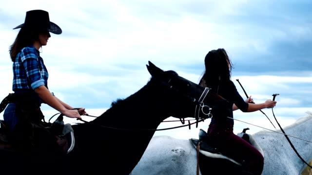 vídeos de stock, filmes e b-roll de passeios a cavalo com amigos na natureza - montar um animal